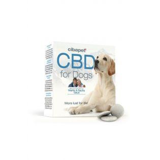 CBD-CBD-Oil-Pellets-Dog-Enecta-1-min