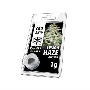 CBD-Jelly-Lemon-Haze-Plant-of-life-1